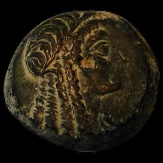 Rare superb Ptolemy V-VI Egyptian bronze coin - great legendary Cleopatra portrait 25 mm