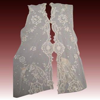 Antique Victorian net lace trim Tambour embroidery on cotton net