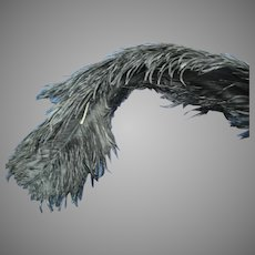 Antique Victorian Large ostrich feather plume