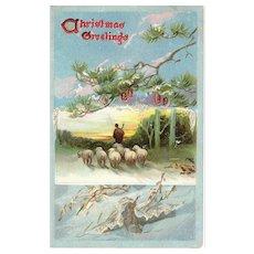 Circa 1909 Raphael Tuck Christmas Holiday Postcard