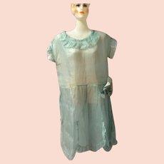 1920's Sheer Embellished Organza Flapper Dress