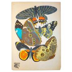Papillons Pochoir Chromolithograph, E. A. Seguy, France, Early 20th C