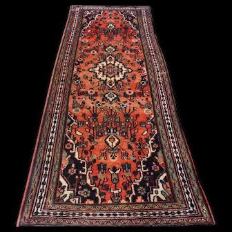 3.5x9.11 Lilihan Persian Runner Rug