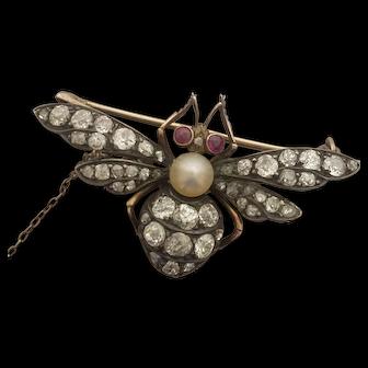 Vintage 14K Dragonfly Brooch Rose Cut Diamonds