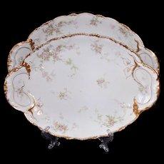 Haviland Limoges Schleiger 146 Platters Gold Pink Flowers Blank133