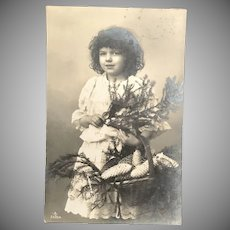 c. 1900 Real Photo Postcard – Girl with Evergreen Branches and Basket of Pine Cones