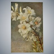 "c.1900 TUCK ""White Lilies"" Oilette Easter Post Card of Original Painting by Bertha Maguire"