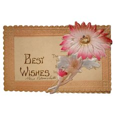 Floral Best Wishes Daisy Fold-Out Greeting Card / Postcard