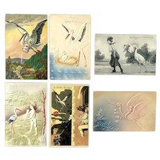 Lot of 6 Vintage STORK Postcards ~ Storks and Babies