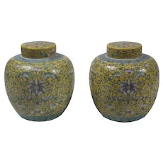 Couple of Vintage Ginger Pots, 19th Century