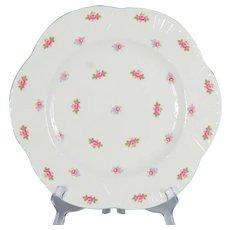 """Set of 6 Shelley Rosebud 10-3/4"""" Dinner Plates"""