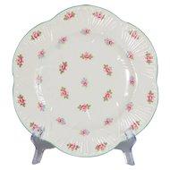 "Set of 6 Shelley Rosebud Luncheon Plates 9-1/8"" Diameter"
