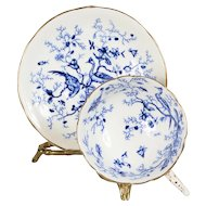 Coalport Cobalt Blue Exotic Birds Teacup & Saucer