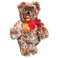 "Vintage 15"" Steiff Zottty Bear with All ID's 0300/35"