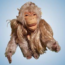 "Vintage STEIFF Mohair Wool ""Pavian Coco"" Baboon with Hair Collar All ID's"