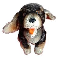 Rare Steiff 5x Jointed Dachshund Puppy Dog Beppo  w/Happy Open Mouth