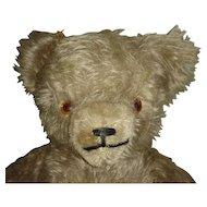 """Gorgeous Vintage 14"""" Cream Mohair Teddy Bear"""