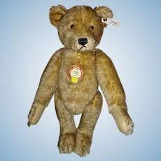 Steiff L. Edition PETSY 1928 Teddy Bear w/Brown Tipped Mohair EAN 407451