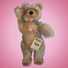 Steiff Teddy Baby Replica of The 1930 Original 0176/42
