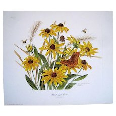 """49 """"BLACK-EYED SUSAN"""" by Anne Ophelia Dowden Signed Limited Edition Print 1974"""