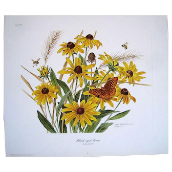 BLACK-EYED SUSAN by Anne Ophelia Dowden Signed Limited Edition Print 1974