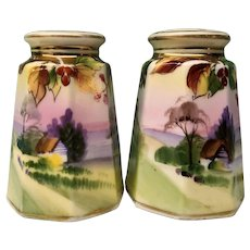 Salt and Pepper Hand Painted Nippon Morimura