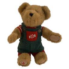 Boyd bear/ Best dress series/Jr. mintly