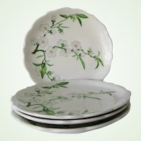 "4 Syracuse China Restaurant Ware Park Lane 10"" Dinner Plates Apple Blossom"