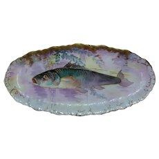 "Magnificent 14 Piece Haviland & Co Limoges Factory (1888-1896) Fish Set; Artist Signed ""V Fowler"""