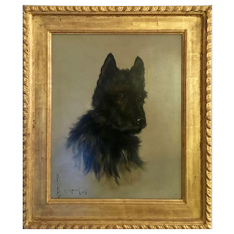 Fanny Moody ,English Edwardian portrait of a Scottie called Blackie