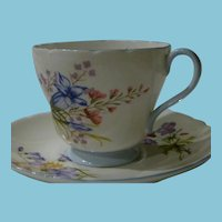 1940-1966 Shelley Cup and Saucer Wild Flower & Blue Rock #2328 Pattern