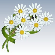 1960's Pin Bouquet of White Daisy Daisies