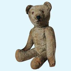 Early Steiff Teddy Bear 12 inches