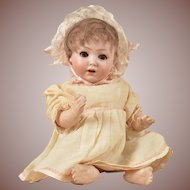 Precious Schoenau Hoffmeister Character Baby - 10 Inches