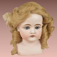 Beautiful Antique Human Hair Strawberry Blonde Wig with Long Curls