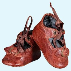 Brown Leather Bebe Shoes - 1.4inches
