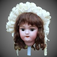 Gretel ~ Brown Mohair Wig with Shoulder Length Curls, Size 8-9