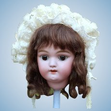 Gretel ~ Brown Mohair Wig with Shoulder Length Curls, Size 7-8