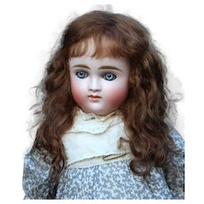 Alice ~ Dark Brown Mohair Wig, Size 8-9