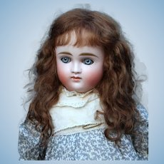 Alice ~ Dark Brown Mohair Wig, Size 8-9