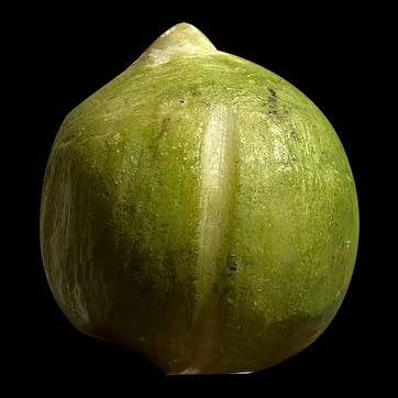 "Early Vintage Italian Alabaster Stone Fruit 2"" Petite Green Fig Alabaster Fig"