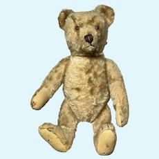 "Antique Early Steiff Jointed 12"" Brown Teddy Bear Original Steiff Fantastic Bear"