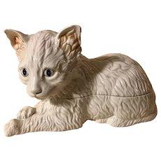 Antique Faience Tin Glazed Porcelain Cat Box