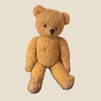Vintage 1940s Golden Plush American Teddy Bear