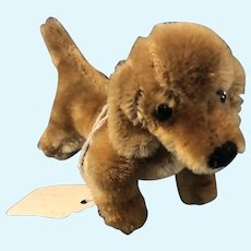 "Adorable Vintage Miniature Steiff Bazi Dachshund Dog 6.5"" German Mohair"