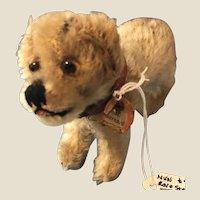 Precious Rare Steiff Miniature St Bernard Dog Chest Tag German Mohair