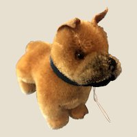 Sweetest Tiny Steiff Vintage Miniature Boxer Dog Standing German Mohair