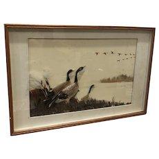 Ducks in a Marsh and in Flight
