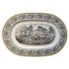 Gorgeous Villeroy &  Boch Audun Ferme oval platter