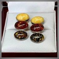 Tri-Color Amber Earrings in Sterling Silver, for pierced ears